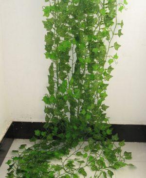 Ivy Green Leaf