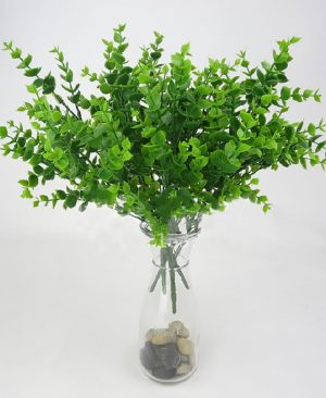 Leaf Green Grass